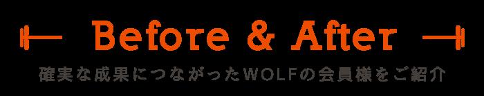 確実な成果につながったWOLFの会員様をご紹介